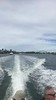 🏟️🌊🛥️ Headed to our second Sydney show by boat!  Adam's igs 2/22