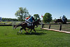2019-04-27 Queen's Cup Steeplechase kbd_2173