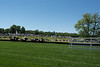 2019-04-27 Queen's Cup Steeplechase kbd_2143