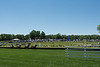 2019-04-27 Queen's Cup Steeplechase kbd_2145