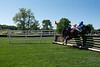 2019-04-27 Queen's Cup Steeplechase kbd_2174
