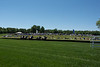 2019-04-27 Queen's Cup Steeplechase kbd_2142