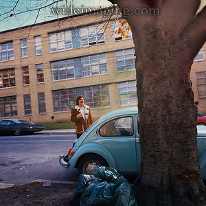 Once lined with Beech Trees: the 35th Avenue side of Flushing High School, October 1973