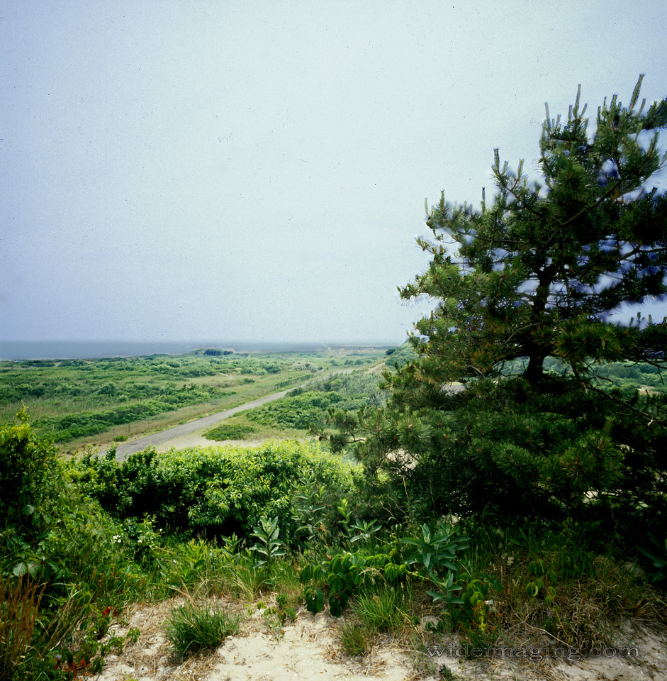 View from top of bunker, July 1974.