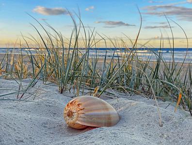 GC 64 Sun. Sand. Shells. Serenity.