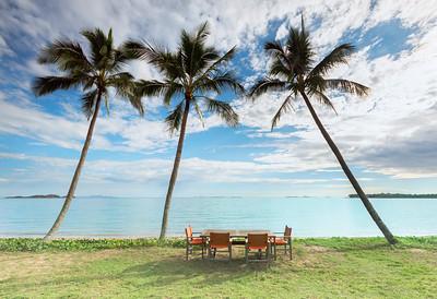 NQ 08 Tropical Paradise