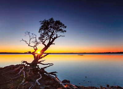 SC 62 Wyeba Sunrise