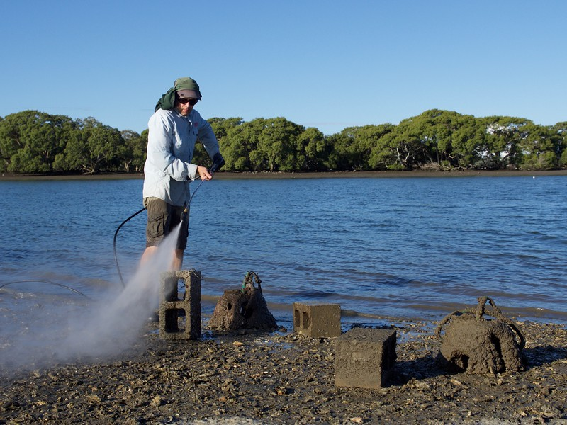 Water blasting settlement structure for oyster recruitment monitoring in Pumicestone Passage