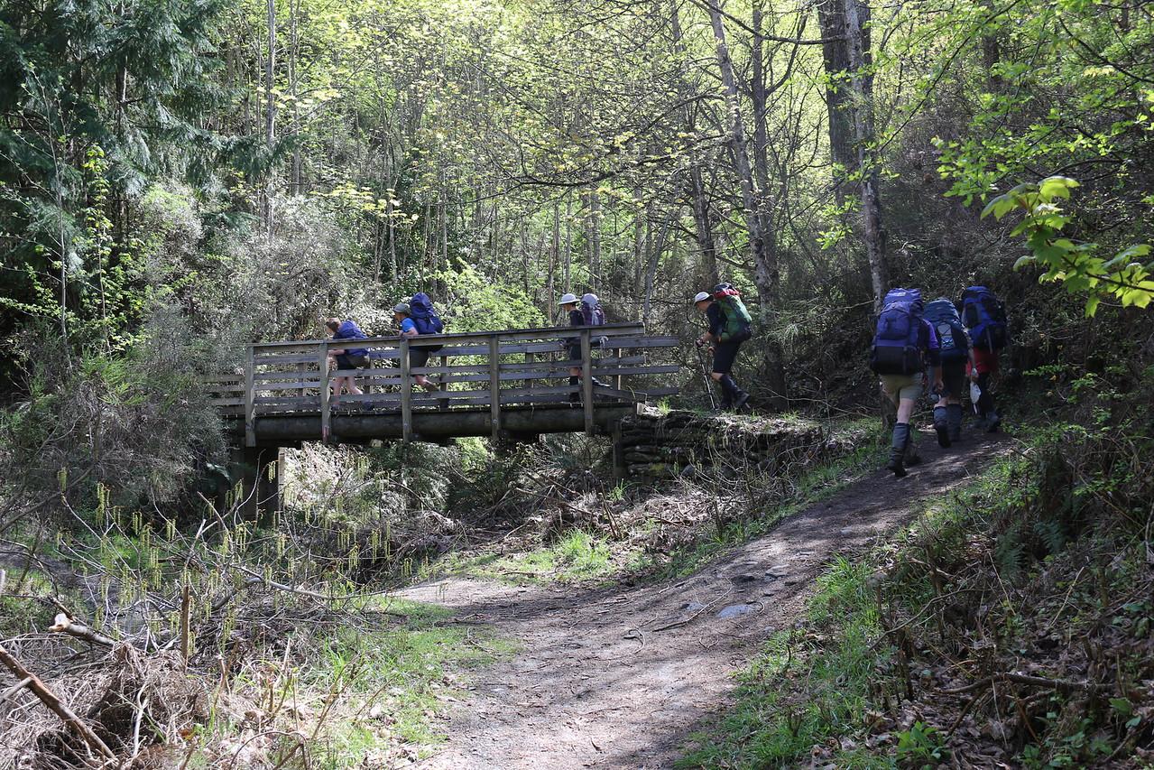 Bush Creek Walkway, Arrowtown