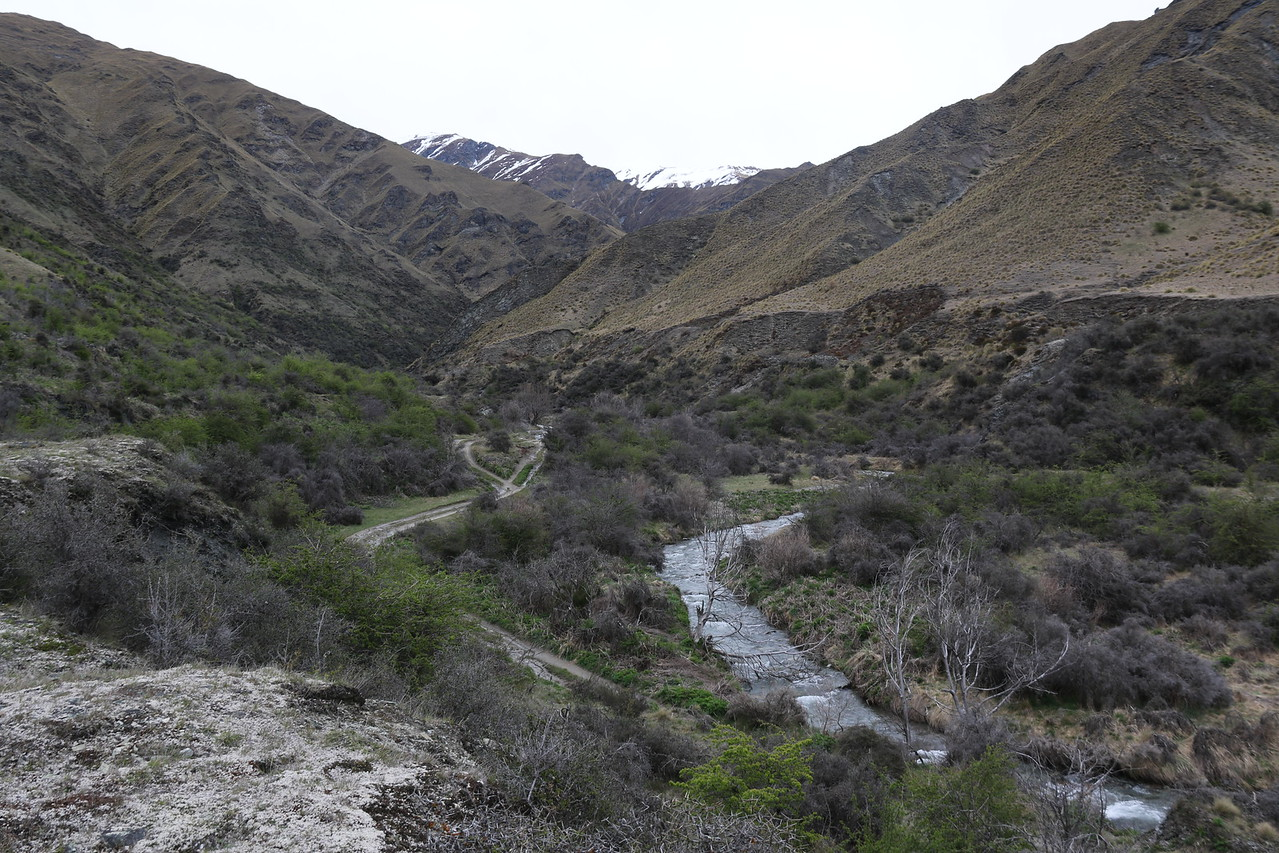 Rich Burn Valley - Looking upstream from near Macetown