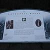 Info sign at Latourell Falls