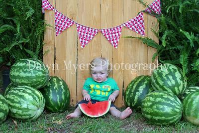 Watermelon~2015