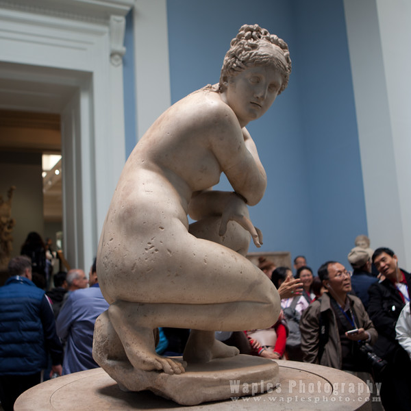 Lely's Venus (Aphrodite)