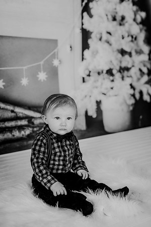 00010--©ADHphotography2018--Buhr(LO)--ChristmasQuicktakes--December16