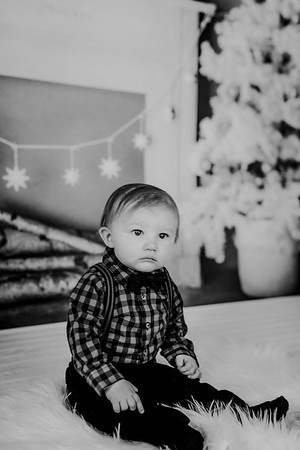 00002--©ADHphotography2018--Buhr(LO)--ChristmasQuicktakes--December16