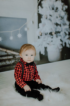 00009--©ADHphotography2018--Buhr(LO)--ChristmasQuicktakes--December16