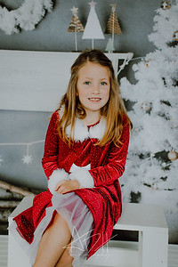 00017--©ADHphotography2018--Matson--ChristmasQuicktakes--December15