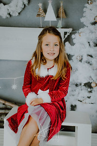 00019--©ADHphotography2018--Matson--ChristmasQuicktakes--December15