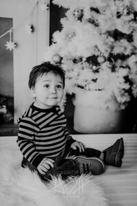 00016--©ADHphotography2018--Swanson--ChristmasQuicktakes--December15