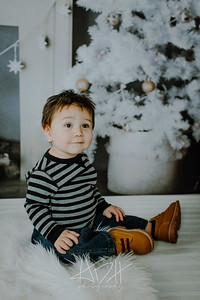 00015--©ADHphotography2018--Swanson--ChristmasQuicktakes--December15