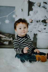 00003--©ADHphotography2018--Swanson--ChristmasQuicktakes--December15