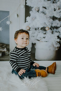 00019--©ADHphotography2018--Swanson--ChristmasQuicktakes--December15