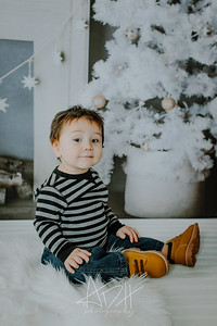 00021--©ADHphotography2018--Swanson--ChristmasQuicktakes--December15