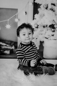 00002--©ADHphotography2018--Swanson--ChristmasQuicktakes--December15