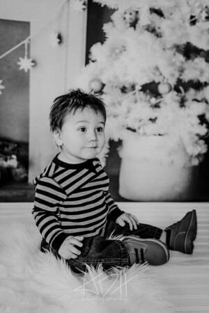 00008--©ADHphotography2018--Swanson--ChristmasQuicktakes--December15