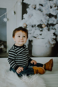 00017--©ADHphotography2018--Swanson--ChristmasQuicktakes--December15
