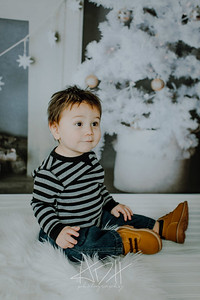 00007--©ADHphotography2018--Swanson--ChristmasQuicktakes--December15
