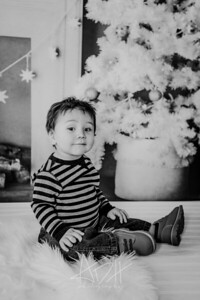00022--©ADHphotography2018--Swanson--ChristmasQuicktakes--December15