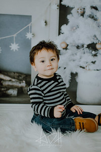 00001--©ADHphotography2018--Swanson--ChristmasQuicktakes--December15