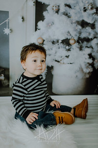 00013--©ADHphotography2018--Swanson--ChristmasQuicktakes--December15