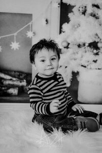 00004--©ADHphotography2018--Swanson--ChristmasQuicktakes--December15
