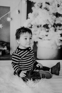 00006--©ADHphotography2018--Swanson--ChristmasQuicktakes--December15