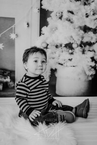 00020--©ADHphotography2018--Swanson--ChristmasQuicktakes--December15