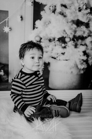 00012--©ADHphotography2018--Swanson--ChristmasQuicktakes--December15