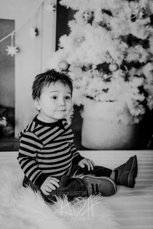 00010--©ADHphotography2018--Swanson--ChristmasQuicktakes--December15