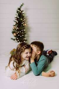 00074-©ADHPhotography2019--Hamilton--ChristmasMini--November5edited