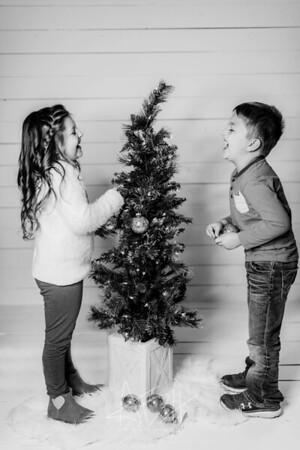 00062-©ADHPhotography2019--Hamilton--ChristmasMini--November5editedbw