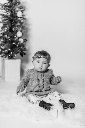 00002-©ADHPhotography2019--Hays--ChristmasMini--NOVEMBER16