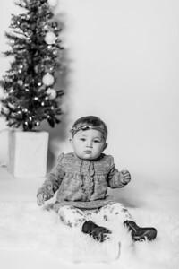 00006-©ADHPhotography2019--Hays--ChristmasMini--NOVEMBER16