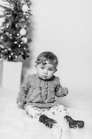 00008-©ADHPhotography2019--Hays--ChristmasMini--NOVEMBER16