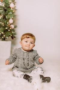 00015-©ADHPhotography2019--Hays--ChristmasMini--NOVEMBER16