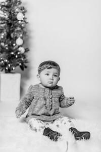 00012-©ADHPhotography2019--Hays--ChristmasMini--NOVEMBER16