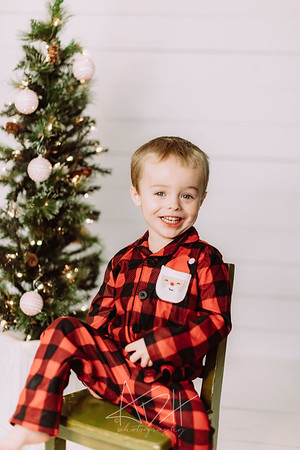 00021-©ADHPhotography2019--Marvin--ChristmasMini--NOVEMBER15