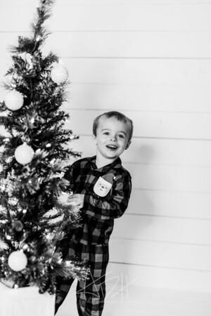 00040-©ADHPhotography2019--Marvin--ChristmasMini--NOVEMBER15
