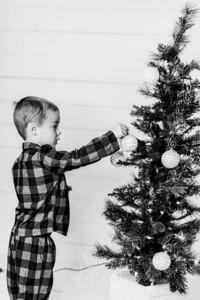 00004-©ADHPhotography2019--Marvin--ChristmasMini--NOVEMBER15