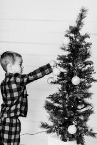 00002-©ADHPhotography2019--Marvin--ChristmasMini--NOVEMBER15